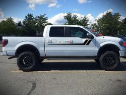 Decal Graphic Vinyl Ford F150 Series 2009-2017