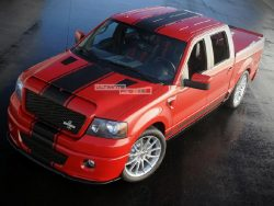 Full Stripe Kit Decal Sticker Graphic Ford F150 2009-2016 Shelby