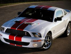 Full Stripe Kit Decal Sticker Graphic Ford Mustang GT 2005-2014 S-197