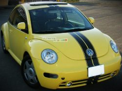 Decal Sticker Graphic Front to Back Stripe Kit Volkswagen New BEETLE