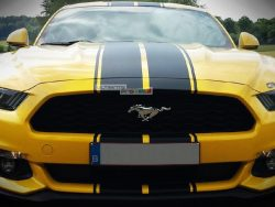 Full Stripe Kit Sticker Decal Graphic Ford Mustang GT